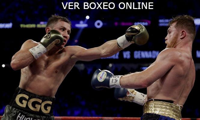 Ver boxeo onine