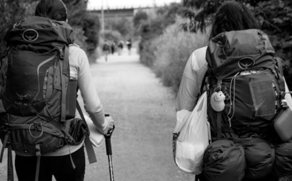 organizar tu Camino de Santiago